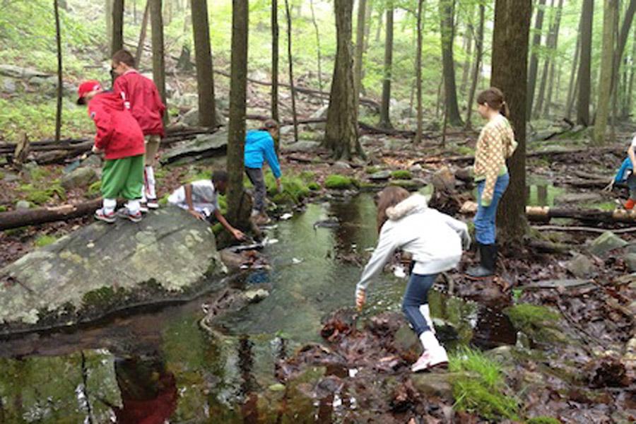 Examining the stream